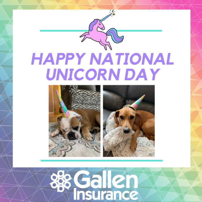 Celebrating National Unicorn Day with some of our pups!