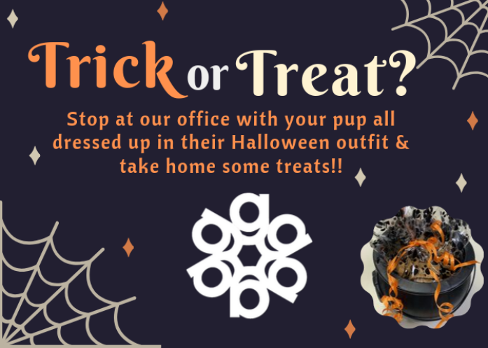 Bring your pup in their Halloween best to Gallen Insurance for a treat