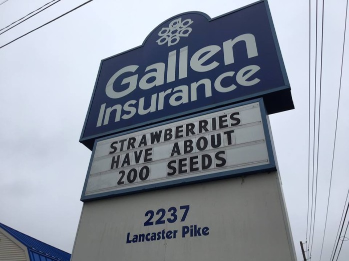 Gallen Insurance sign says strawberries have about 200 seeds