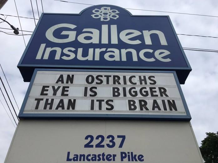 Gallen Insurance Sign, August 5, 2018 -