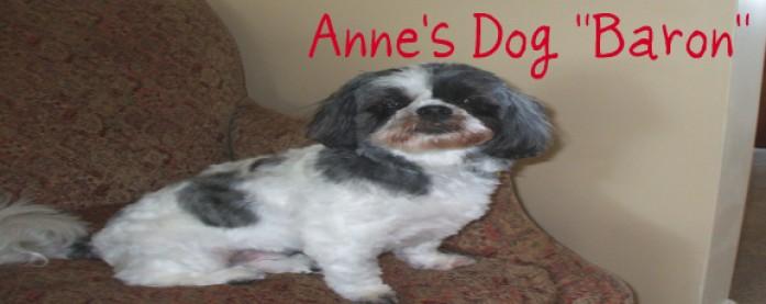 Anne's Dog
