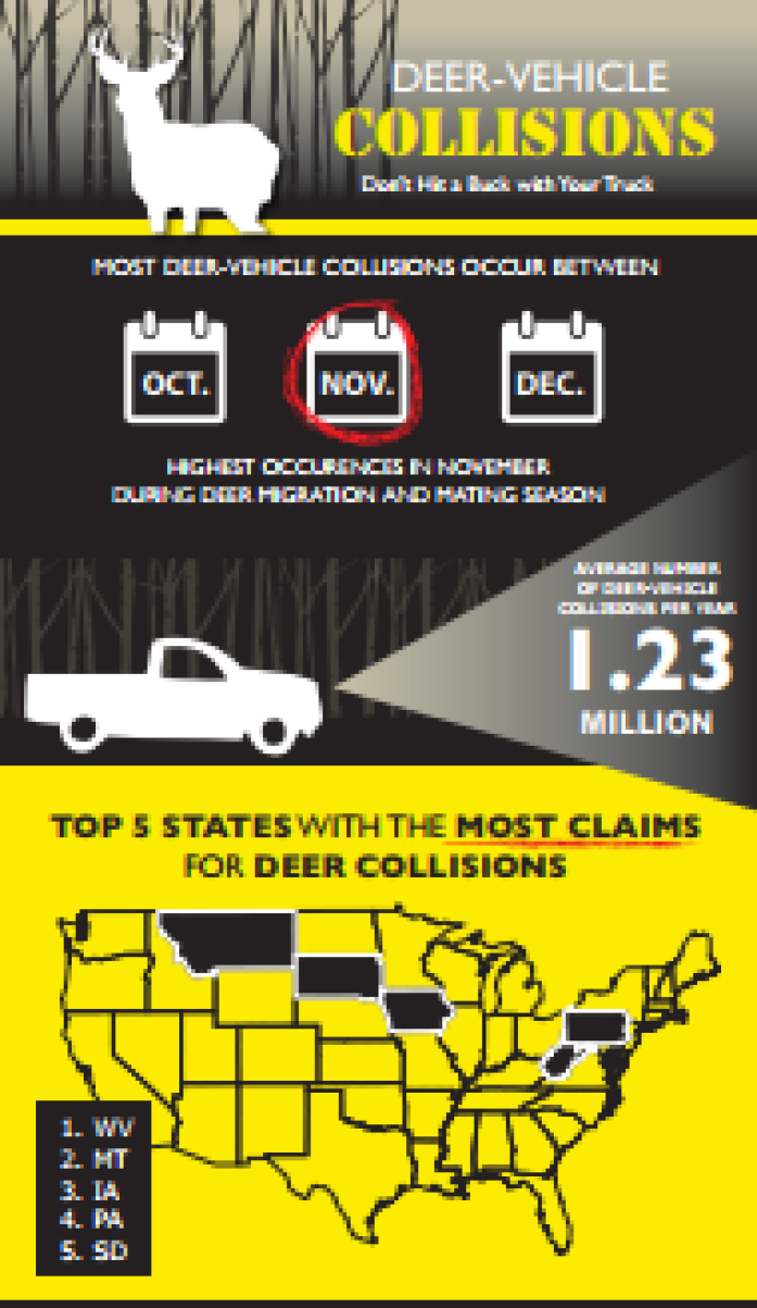 Here are some safety tips to help you avoid a deer collision: Be Alert. Slow Down. Drive Sober. If you see 1 deer there may be more. Use highbeams if clear.