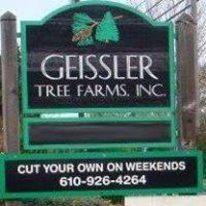 If you are still trying to hunt down the perfect tree to capture the heart of your home this season look no further than Geissler Tree Farms, Inc!