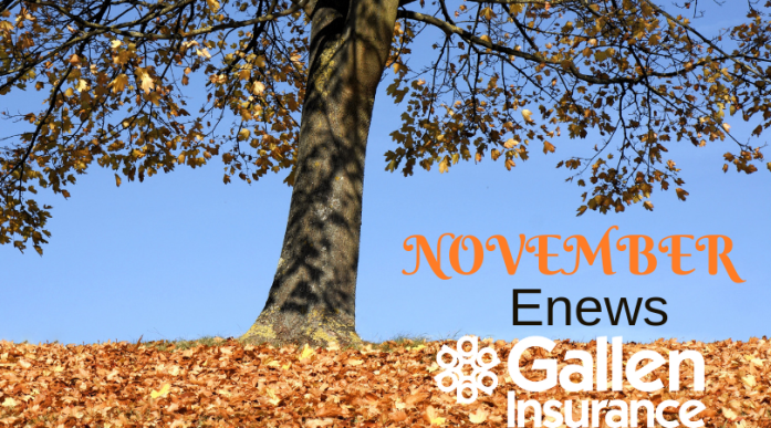 Gallen Insurance November 2018 Enews