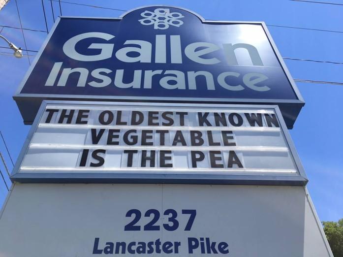 Gallen Insurance Sign -