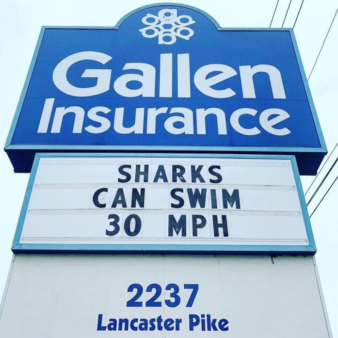 Sharks can swim 30 mph