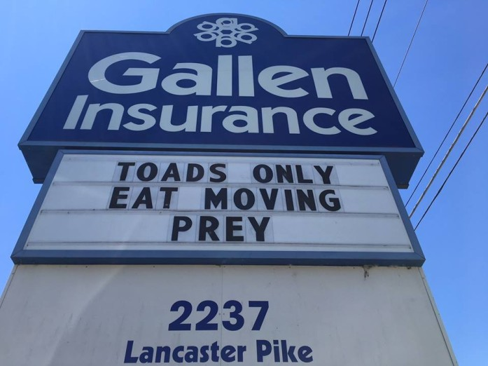 Gallen Insurance sign says toads only eat moving prey