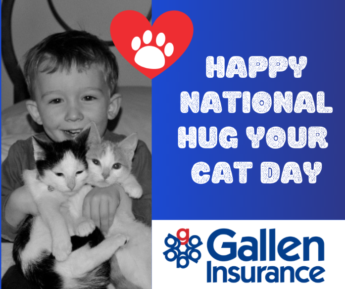Happy National Hug Your Cat Day!